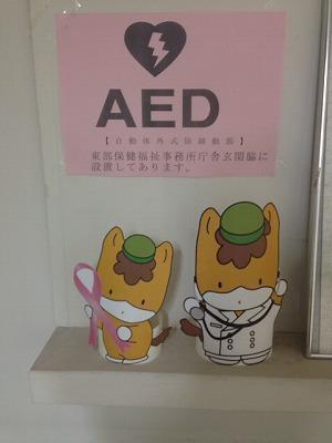 AEDぐんまちゃん.jpg