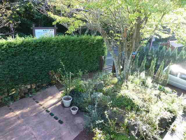 お庭1.jpg
