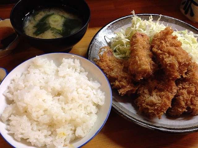 ヒレカツとご飯.jpg
