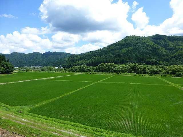 伊南の風景2.jpg