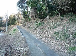別の道2.jpg