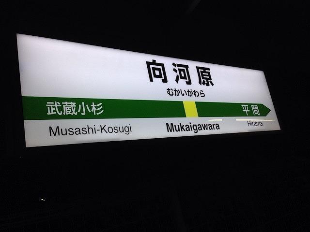 向河原駅2.jpg