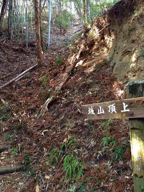 城山へ(竪堀).jpg