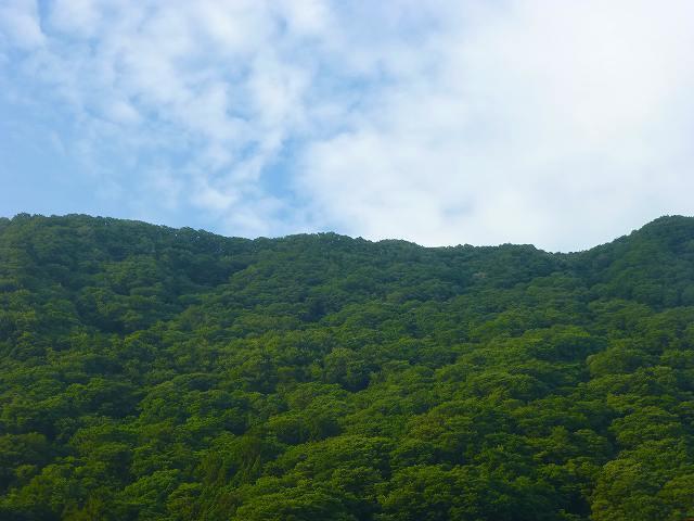 夏空2.jpg