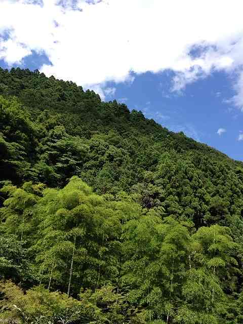 山々と夏空2.jpg