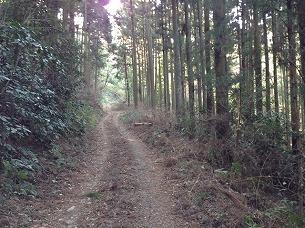 山道3.jpg