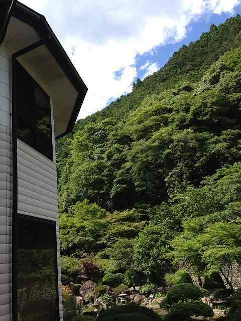 庭の端から見た風景.jpg