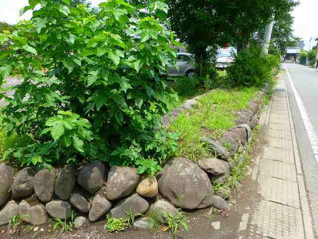 後世の石垣.jpg