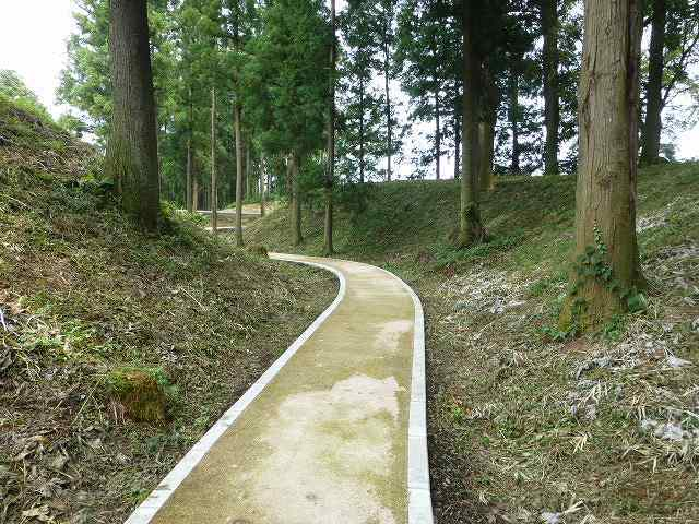 掘の遊歩道1.jpg
