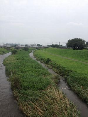 桃ノ木川鉄橋2.jpg