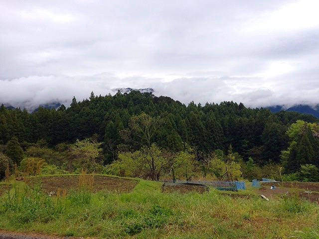 波木井山3.jpg
