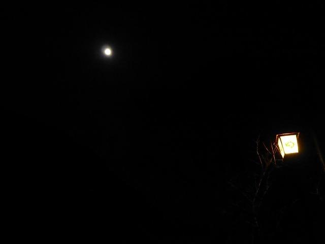 湯の道行燈と月2.jpg