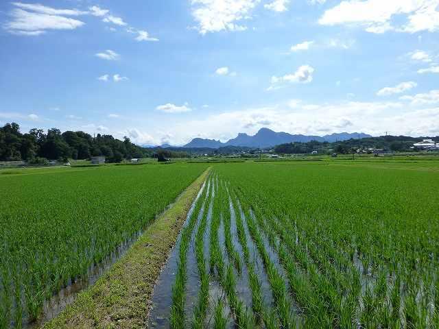 田園風景と妙義1.jpg