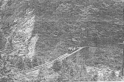 芹沢橋を渡る.jpg