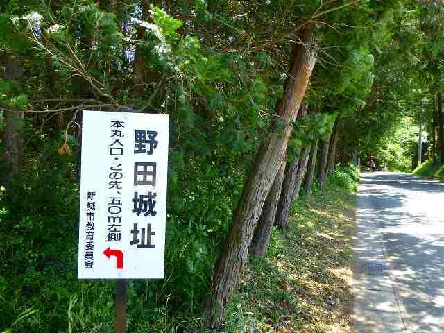 雑木林の先に.jpg