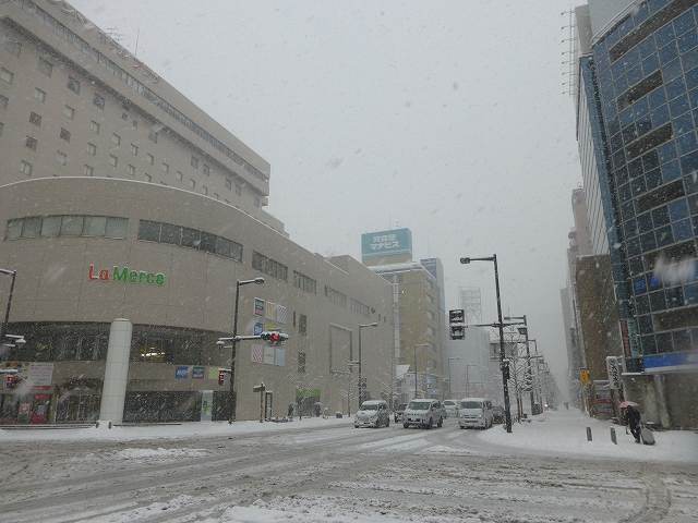 雪の上州玄関口5.jpg