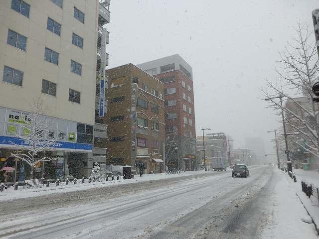 雪の上州玄関口6.jpg