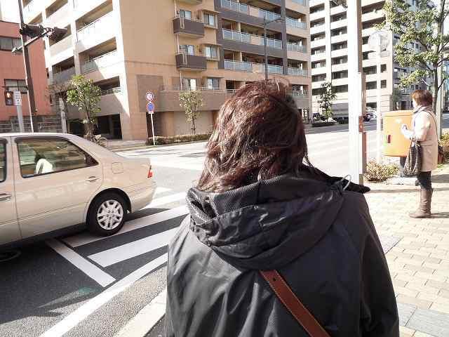 風になびくジャン妻の髪.jpg