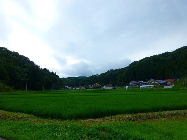 鵜ノ浦の郷.jpg